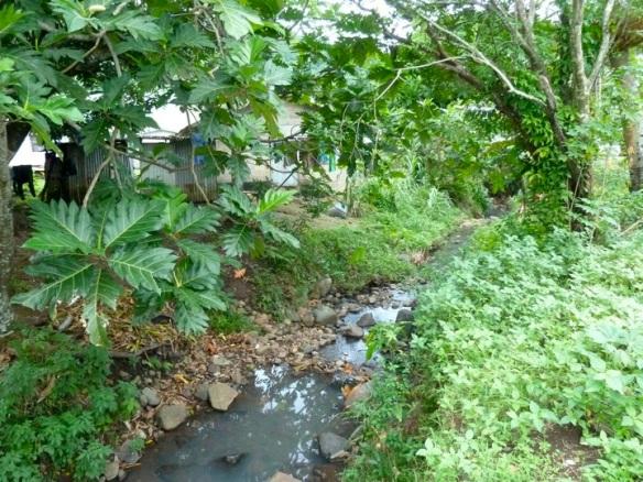 Dakuimbeqa stream
